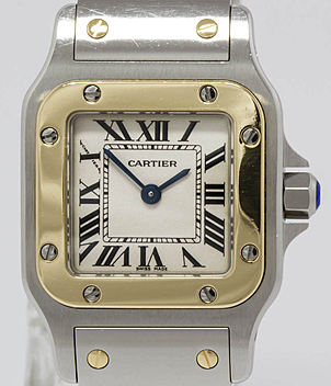 Cartier Santos W20012C4 | Meertz World of Time